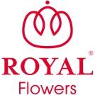 R_flowers_RGB